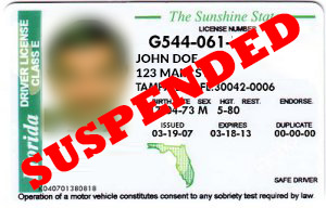 suspended Florida drivers license